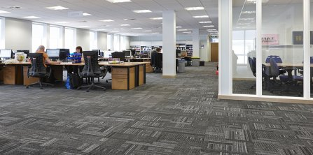 Gradus Offers New Look for Retail Giant